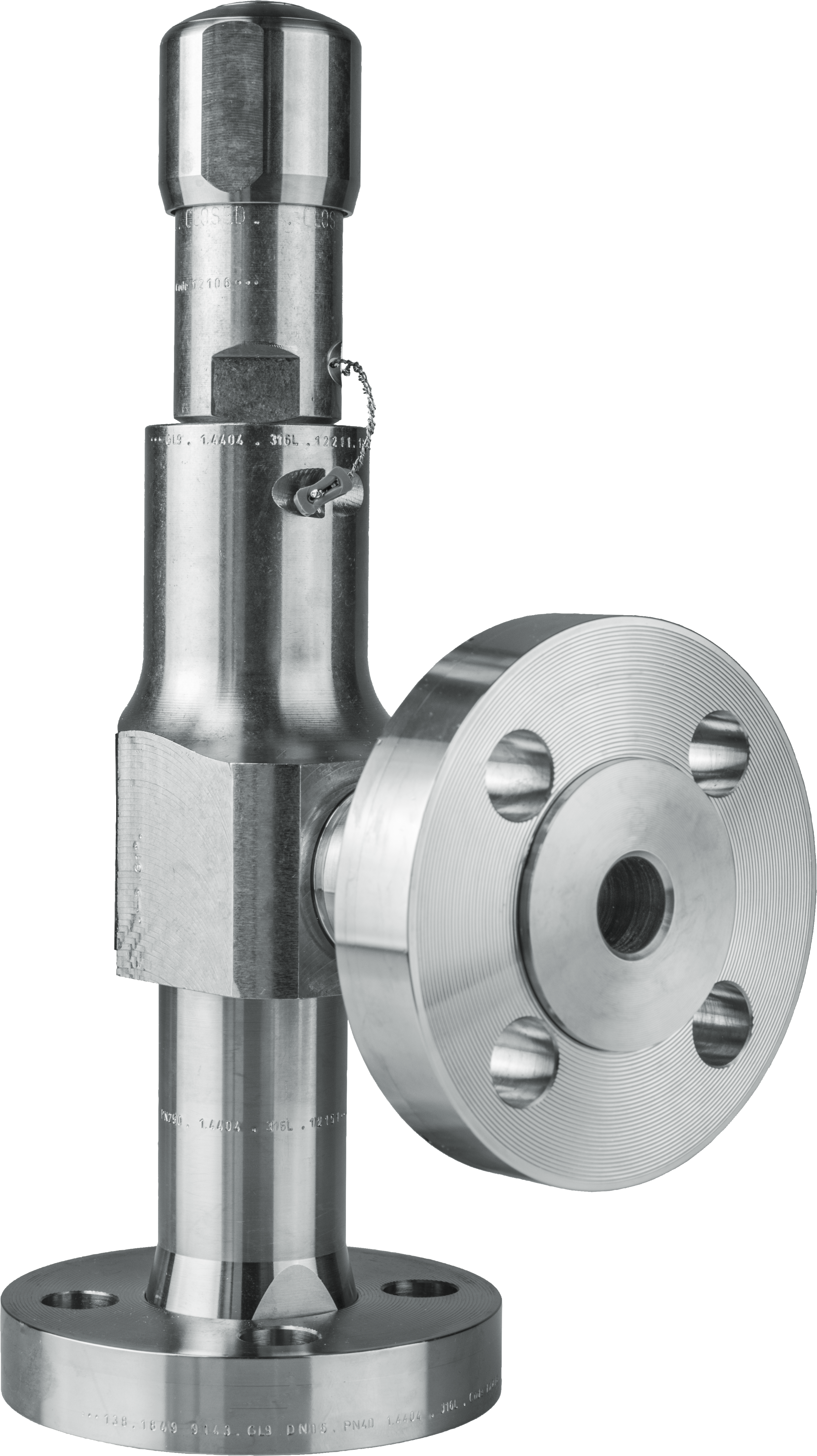 LESER Compact Performance Safety Valve Type 438
