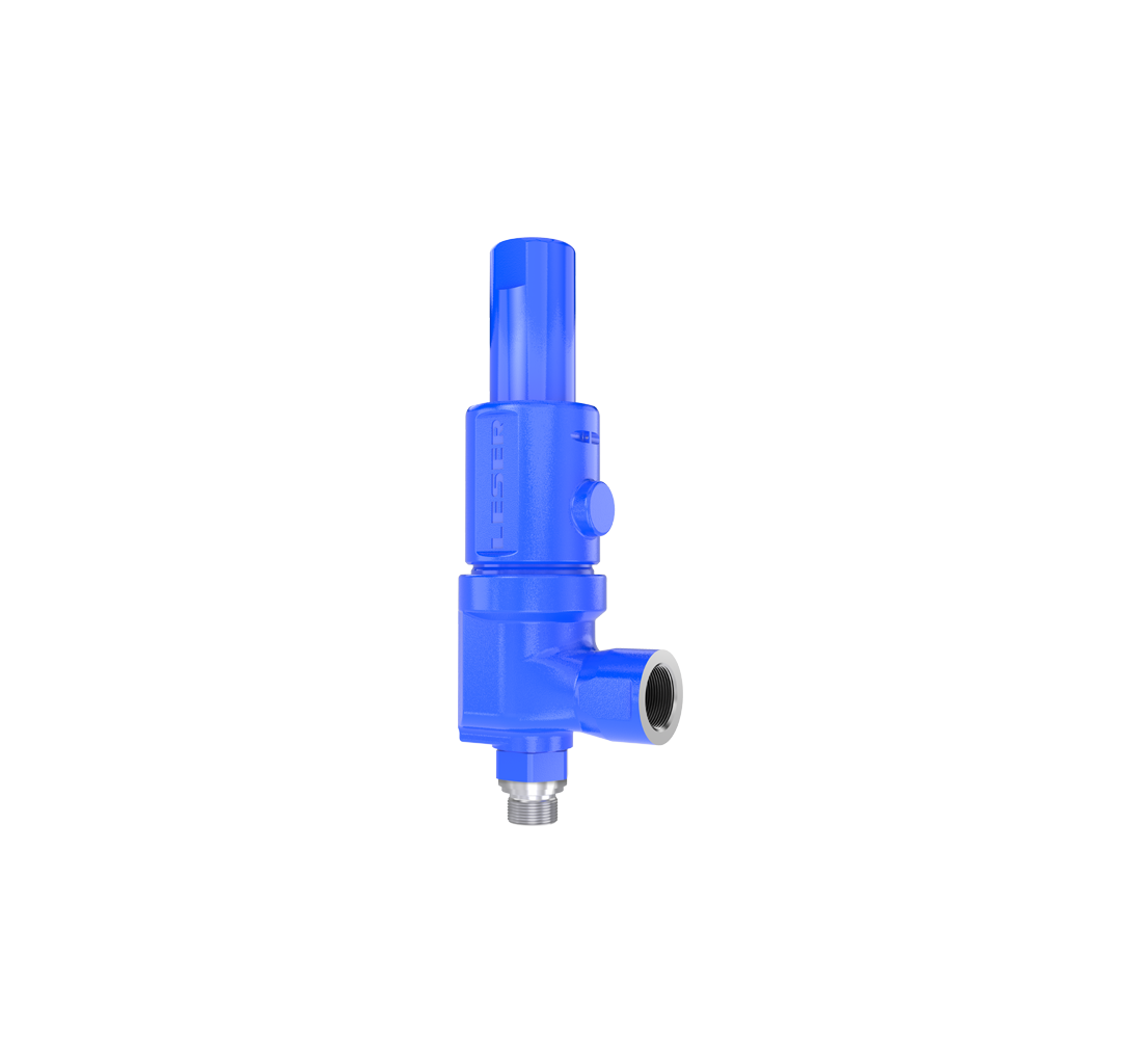 LESER Compact Perfomance Safety Valve